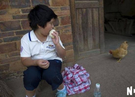 8月4日上午11:34,在路边人家门口坐了十多分钟小宝才缓过神来,才终于肯接过爸爸准备的面包,看到一只母鸡走过来还有兴趣分了块面包给母鸡吃。