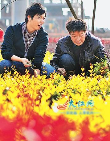 大学生电影民族微频道【5】--贵港自拍--人民网好吗江西高中村官图片