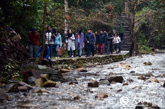 国家4a级风景区,全国农业旅游示范点,国家森林公园,江西省自然保护区.