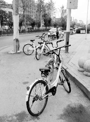 乱停放、抢占机动车道 共享单车乱象谁来管?