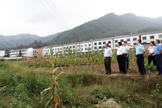 """三清山风景区开展项目建设""""百日攻坚"""""""