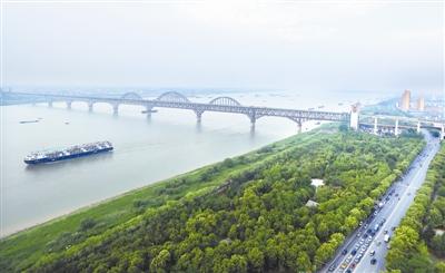 """为了""""一岸翠绿""""――江西九江生态修复百里长江"""