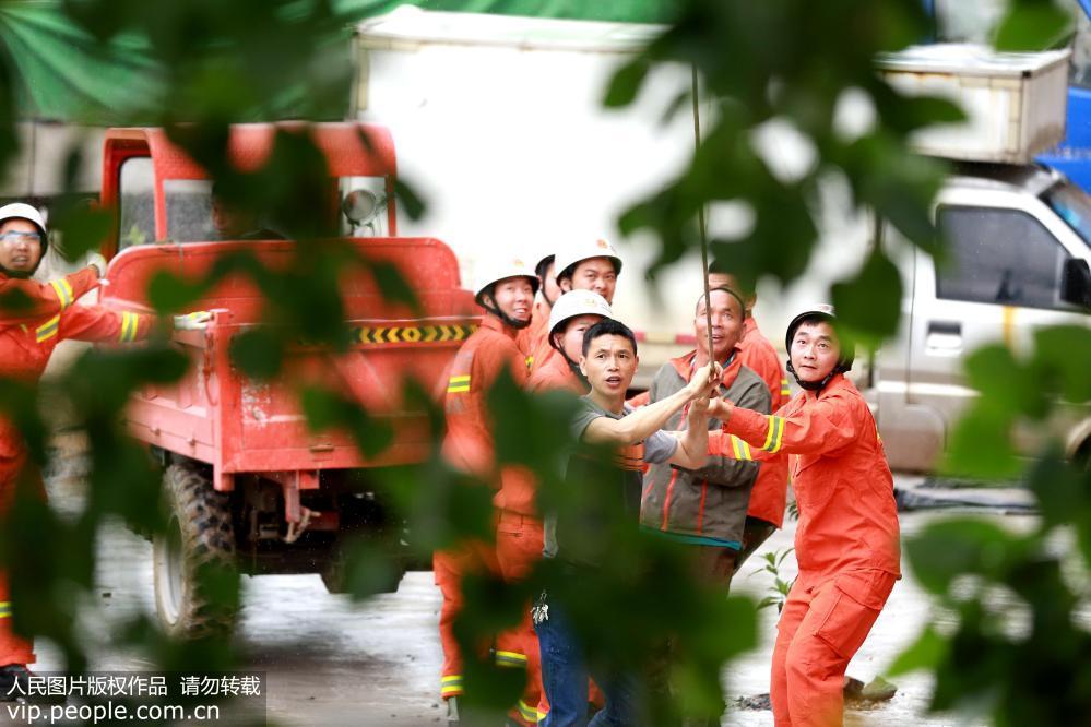 江西峡江:雨后大树压民房 消防救援排险情