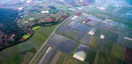 农地经营权抵押试点或将延期