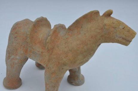 四川发现20余座成汉时期墓葬