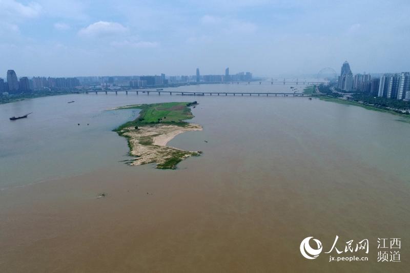 通过航拍镜头可以看到赣江水涨,江心洲面积正逐渐缩小。