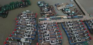 """台风""""安比""""临近 渔船在港避风        7月21日,在浙江省舟山市沈家门渔港,大批渔船已回港避风。随着今年第10号台风""""安比""""逼近浙江舟山……"""