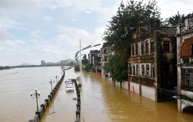 广东阳春部分街道房屋被洪水浸泡