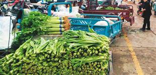 """北京新发地中秋问价        今年8月,部分蔬菜价格一路飙升,一度有人说""""香菜吃不起"""";年内价格原来偏低的猪肉也突然上涨,起伏不定……"""